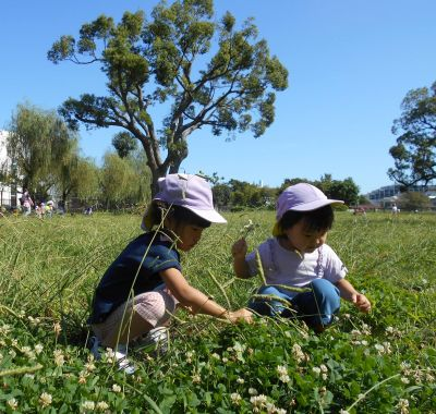 広い園庭や自然がいっぱいの公園で、遊びを通じた身体作りを大切にしている社会福祉法人の認可保育園